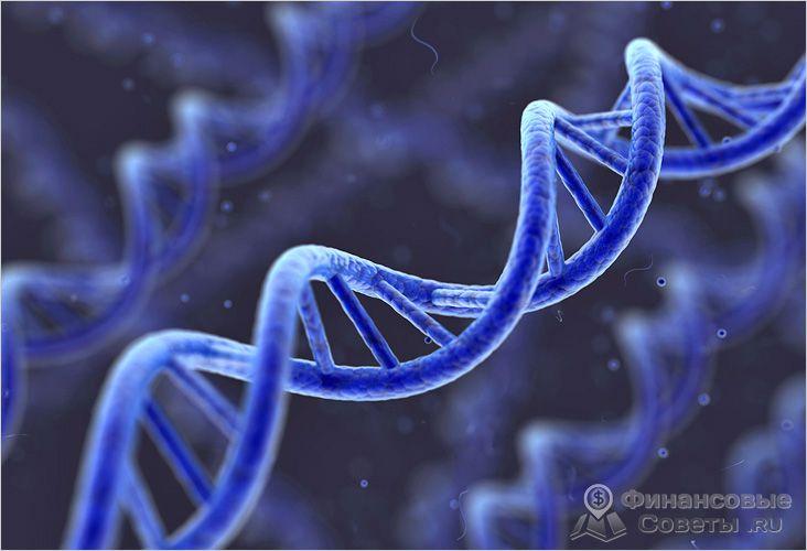 Как правило, всегда назначается экспертиза ДНК